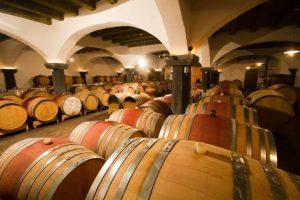 Obisk vinske kleti
