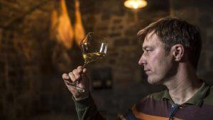 Briški vinar