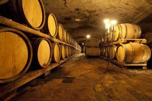 Famozne briške vinske kleti